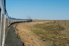 Zug 6, Wüste/Steppe, Kasachstan, 2TE10U-0293, 2TE10, 29.07.2013