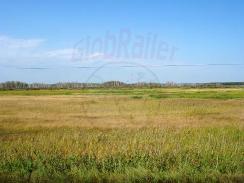 17.08.2004 - Barabinsker Steppe