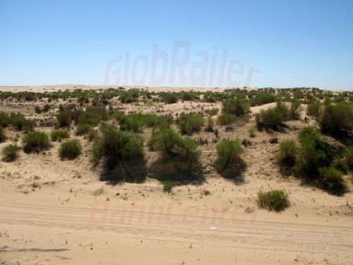 26.07.2007 - Kasachische Wüste