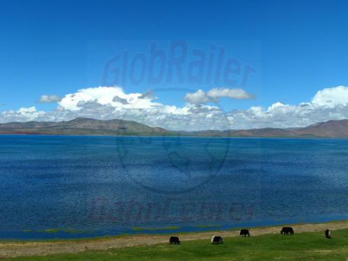 09.08.2007 - Der Tso Nak See in 4594 m Höhe an der Lhasa-Bahn