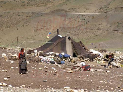 14.08.2007 - Nomaden