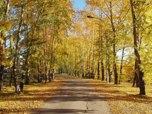 26.09.2003 - Herbst an der Angara