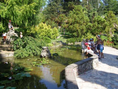 04.08.2006 - Sotschi - Im Park Dendrarij