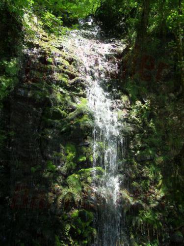 05.08.2006 - Wasserfall im Tal der Mzymta